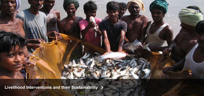 Livelihood Interventions and their Sustainability